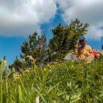 Lézards Agiles / Papys Ouvreurs au sommet après la première reconnaissance