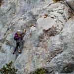 Lézards Agiles / Longueur de départ lors de la première ascension