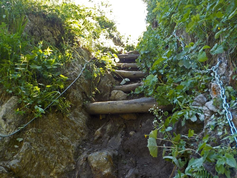 Travaux sentier de Tavaneuse 2019